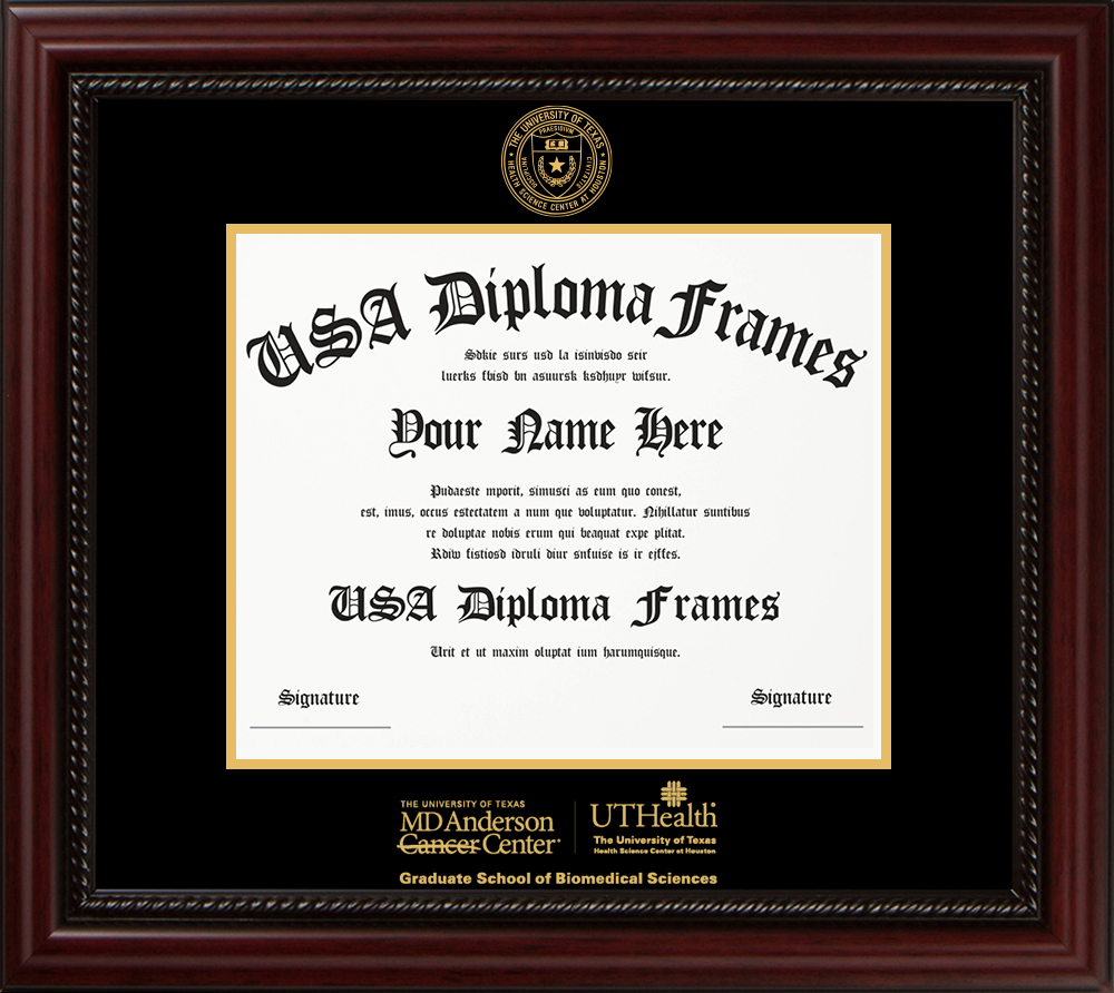 Single - Horizontal Document - Cherry Rope Moulding - Black Mat - Gold Accent Mat - Gold Seal - Gold Embossing Diploma Frame